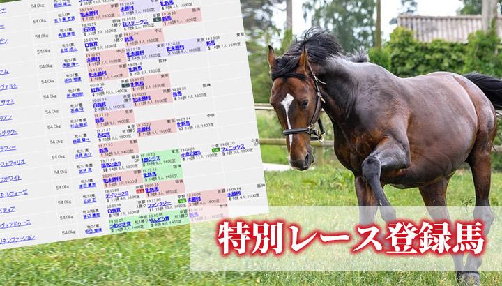 今週の特別レース登録馬<2020年2月第2週>