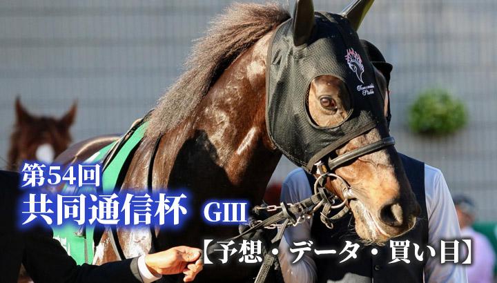 第54回 共同通信杯(GⅢ)【予想・データ・買い目】